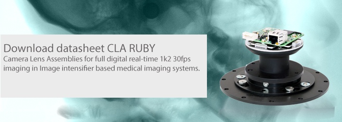 landing page picture RUBY CLA v2.jpg